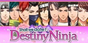 destiny ninja