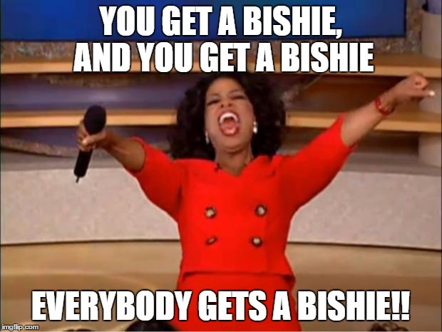 you get a bishie